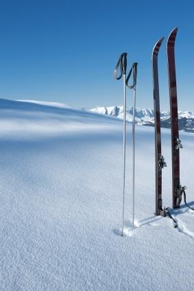 Praxis Skis