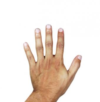 Isolated image of a hand and fingernails