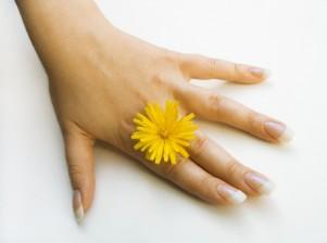 Hand and Flower