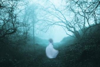 A dark, spooky forest with a ghostly woman in a white dress