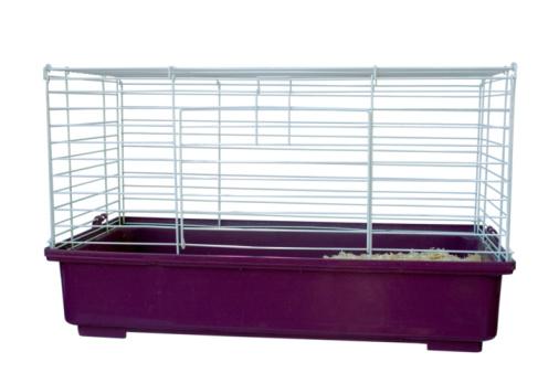 Guinea Pigs Cage Gestation Crates Bcma