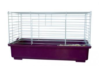 Types of Guinea Pig Cages