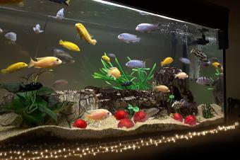 Christmas Fish Tank Decor