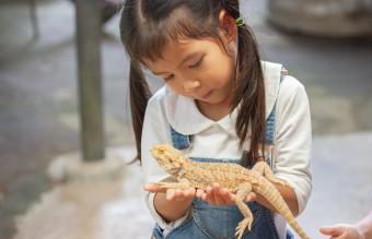 Girl Holding Lizard