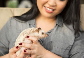 Woman holding a hedgehog