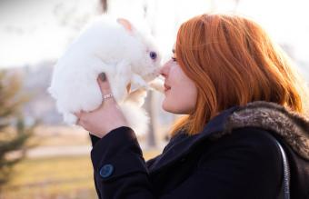 Girl With White Bunny