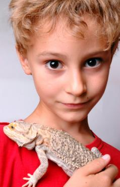 Boy with his pet bearded dragon