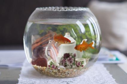 Goldfish bowl tea set decor