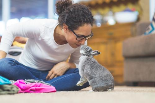 woman rubbing noses with pet rabbit