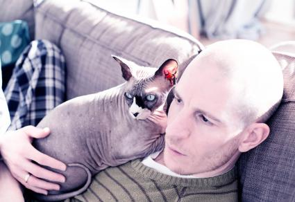 Man with his cuddling sphynx cat
