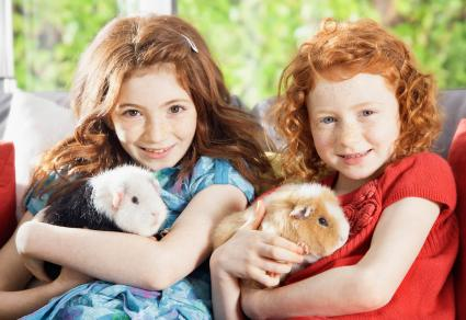 Girls holding guinea pigs