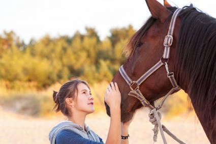 Teenage girl stroking brown horse's nose