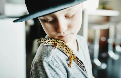 boy looking at pet leopard gecko
