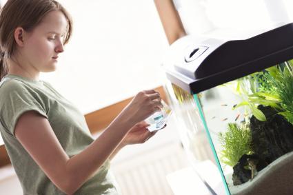 Teenage girl testing aquarium water with home kit