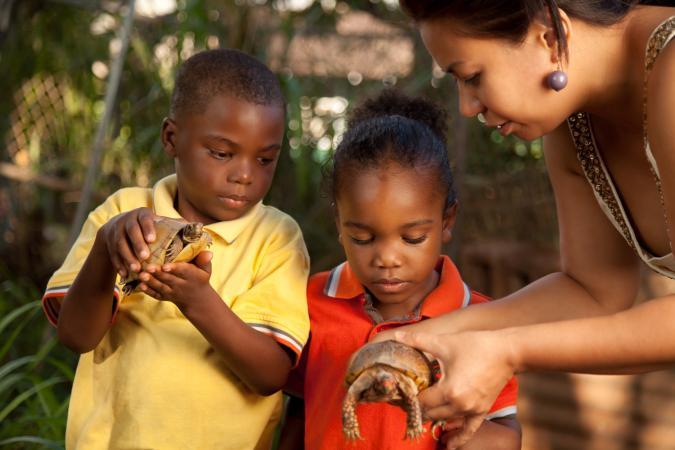 Two_boys_examining_turtles_with_teacher.jpg