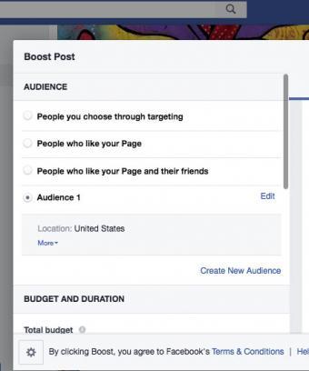 Screenshot of Facebook Boost Post