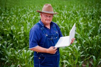 FarmVille Hints