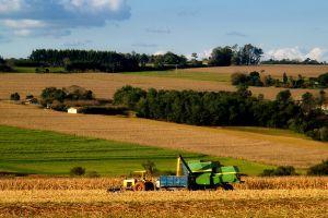 Create a virtual farm with Farm Town.