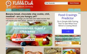 Nibbledish.com screenshot
