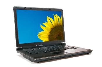 laptop with sunflower wallpaper