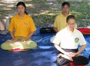 Meditate with the Himalayan Masters