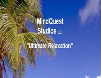 https://cf.ltkcdn.net/stress/images/slide/129314-500x387-Mindquest-Studios.jpg