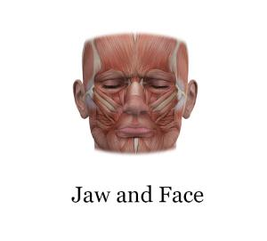 jaw and face