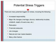Potential stress triggers