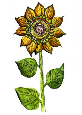 https://cf.ltkcdn.net/tattoos/images/slide/156656-583x823r1-Sunflower.jpg