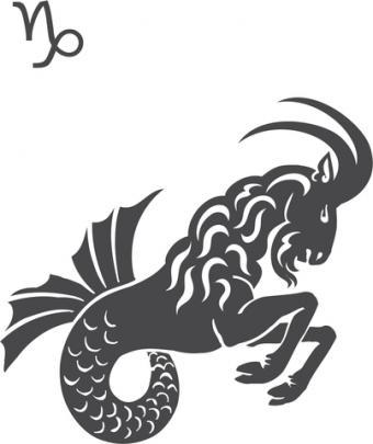 Capricorn sea goat and glyph symbol; © Rosen Litov | Dreamstime.com