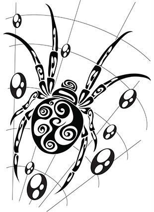 Ornate spider in web