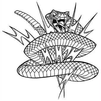 Rattlesnake with lightening bolts