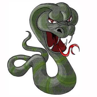 Snake baring its fangs