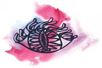 Ethnic eye