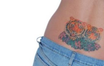 Feline Tattoos