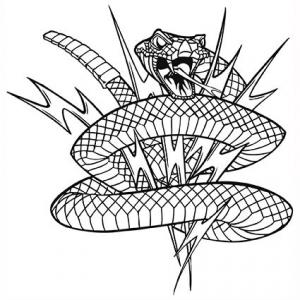 Rattlesnake with lightening bolts