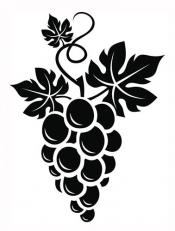 Grape vine tattoo design
