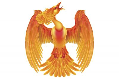 yellow and orange phoenix