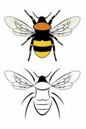 bumble bee flash