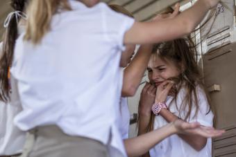 Causes and Effects of School Violence