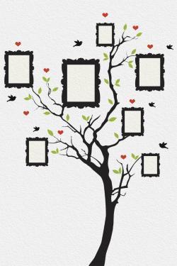 Tree photo gallery