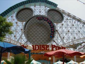 Disney_land_coaster.jpg