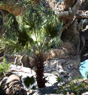 https://cf.ltkcdn.net/themeparks/images/slide/122807-450x485-lion_tree_life.jpg