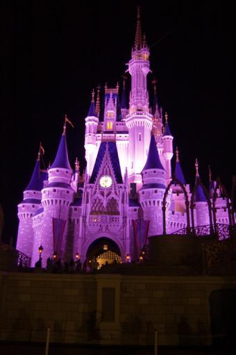 https://cf.ltkcdn.net/themeparks/images/slide/125600-500x752r1-castle_night.jpg