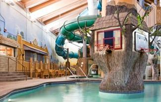 Wild Woods Water Park at Holiday Inn Mpls. NW Elk River