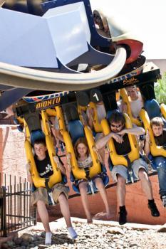 Montu coaster at Busch Gardens Tampa