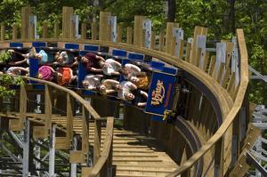 Voyage Roller Coaster