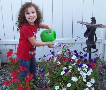 Little Tikes Garden Toys