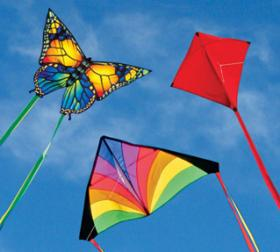 Into The Wind Beginner Kites