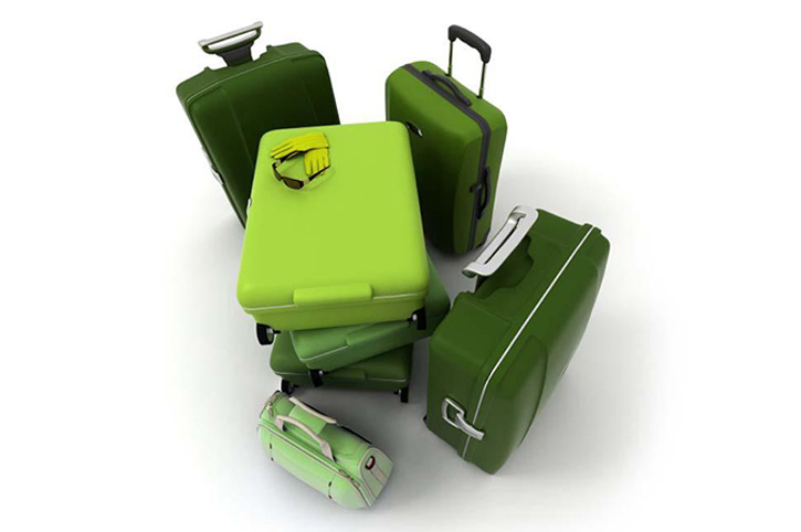 Green_Luggage-new.jpg